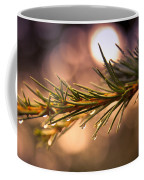 Rain Droplets On Pine Needles Coffee Mug by Loriental Photography