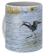 Reddish Egret Canopy Feeding Coffee Mug by Louise Heusinkveld