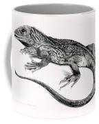 Reptile Coffee Mug by English School