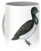 Ring-necked Duck  Coffee Mug by Anonymous