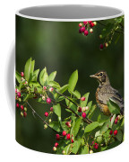 Robin And Berries Coffee Mug by Mircea Costina Photography