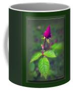 Rose Bud Coffee Mug by Brian Wallace