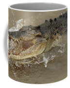Saltwater Crocodile Coffee Mug by Bob Christopher