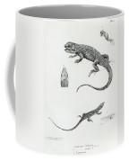 Shingled Iguana Coffee Mug by English School