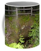 Smithwick Copper Mine Isle Royale National Park Coffee Mug by Jason O Watson