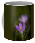 Spring Crocus Glow Coffee Mug by Mike Reid