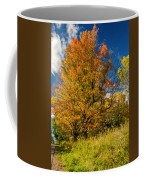 Sugar Maple 3 Coffee Mug by Steve Harrington