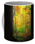 Sunlights Warmth Coffee Mug by Frozen in Time Fine Art Photography