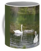 Swan Family Squared Coffee Mug by Teresa Mucha