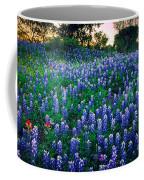 Texas Bluebonnet Field Coffee Mug by Inge Johnsson