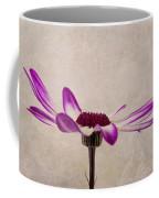 Texturised Senetti Pericallis Coffee Mug by John Edwards