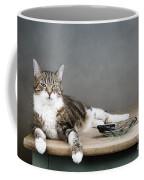 The Boss Coffee Mug by Nailia Schwarz