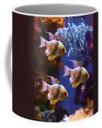Three Pajama Cardinal Fish Coffee Mug by Amy Vangsgard