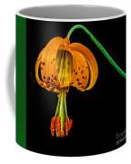 Tiger Lily Coffee Mug by Robert Bales