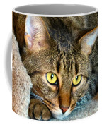 Tiger Time Coffee Mug by Art Dingo