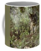 Timber Wolf Coffee Mug by Angel  Tarantella