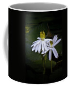 Togetherness Coffee Mug by Holly Kempe