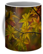 Tranquil Collage Coffee Mug by Mike Reid