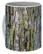 Tree Bark Detail Study Coffee Mug by Design Turnpike
