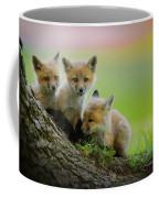 Trio Of Fox Kits Coffee Mug by Everet Regal