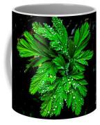 Water Drops Coffee Mug by Robert Bales