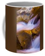 Waters Of Zion Coffee Mug by Adam Romanowicz