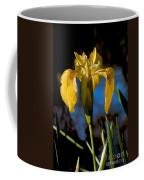 Wild Iris Coffee Mug by Robert Bales