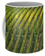 Wine Acreage In Germany Coffee Mug by Heiko Koehrer-Wagner