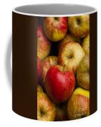Worcester Pearmain Coffee Mug by Anne Gilbert