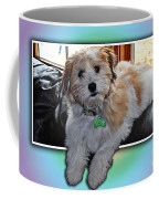 Yoshi Havanese Puppy Coffee Mug by Barbara Griffin