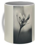 You Will Always Be Coffee Mug by Laurie Search