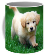 You're Only Young Once Coffee Mug by Christina Rollo