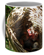 Red-winged Blackbird Babies And Egg Coffee Mug by J McCombie