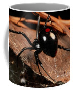 A Black Widow Spider Latrodectus Coffee Mug by George Grall