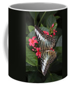 A Blue Clipper Butterfly Feeds Coffee Mug by George Grall