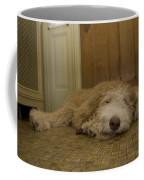 A Dog Lies On A Linoleum Floor Coffee Mug by Joel Sartore