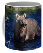 A Kodiak Brown Bear Wades In An Alaska Coffee Mug by George F. Mobley