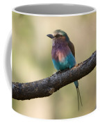 A Lilac-breasted Roller Coracias Coffee Mug by Joel Sartore