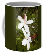 A Native Hawaiian Hibiscus Arnottianus Coffee Mug by Taylor S. Kennedy
