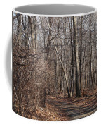 A Walk In The Woods Coffee Mug by Robert Margetts