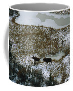 Aerial Of A Male And Female Moose Coffee Mug by Norbert Rosing