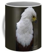 African Sea Eagle 5 Coffee Mug by Heiko Koehrer-Wagner