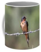 Barn Swallow - Looking Good Coffee Mug by Travis Truelove