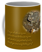 Birthday Party Invitation - Common Toad - Child Coffee Mug by Mother Nature