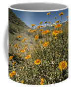 Bush Sunflowers Grow On Arid Slope Coffee Mug by Gordon Wiltsie