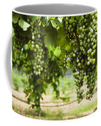 Clusters Of Grapes On The Vine At Fall Coffee Mug by James Forte
