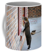 Curiosity Inspirational Cat Photograph Coffee Mug by Jai Johnson