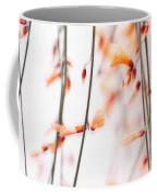 Curtain Coffee Mug by Priska Wettstein