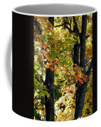 Dazzling Days Of Autumn Coffee Mug by Will Borden