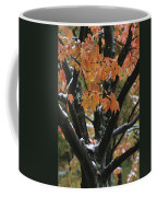 Fall Foliage Of Maple Tree After An Coffee Mug by Tim Laman